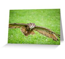 Eagle Owl test flight Greeting Card