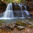 Upper Falls by Jason Vickers
