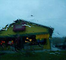 Blinding rain in Vermont by RonnieGinnever