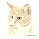 Rusty by Jennie L. Richards