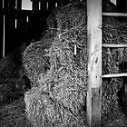 Up To The Loft - Old Worn Hay Barn  by Reuben Baker