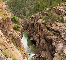 Climbing into the Animas River Canyon by algill