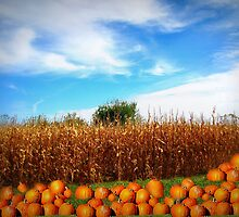Autumn In Iowa Fields by Linda Miller Gesualdo