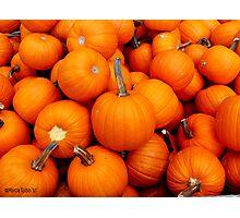 Pile-O-Pumpkins Photographic Print