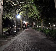 The Park at Night in Charleston, SC by imagetj