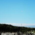 Beach Fence by Kyle LeBlanc