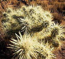 Mojave Desert 3 by Kate Krutzner