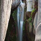 Proctor Falls, Madera Canyon AZ by WiredMarys