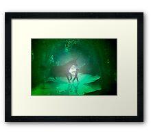 A secret place . . . a boy and his unicorn. Framed Print