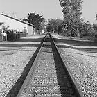 Railroad track by Ciarra Ornelas