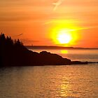 Sunrise Over Great Head - Acadia National Park by David Clayton