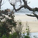 Mallacoota Inlet, Victoria ,Sandbars by Virginia McGowan