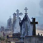 carlyle cemetery headstones, rutherglen, victoria by Georgina James