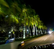 Miami Drive By Shooting by jason lockett