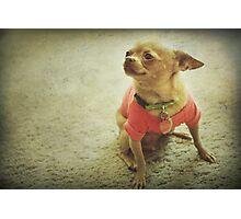 Her Pink Shirt Photographic Print