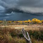 An Approaching Storm by KDPhotos