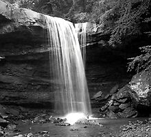 Cucumber Falls by Teresa Young