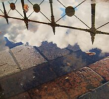 Australian Reflection by nataliehynes
