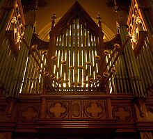 Pipe Organ by Greg Carrick