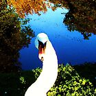 You're The Swan  by YoungPoet