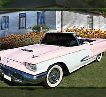 1959 Ford Thunderbird by Keith Hawley