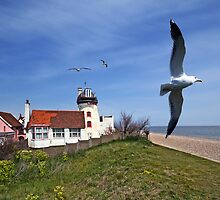 Aldeburgh Windmill by Nigel Bangert
