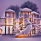 Space Playground by Darlene Virgin