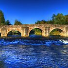 River Exe at Bickleigh Bridge by Rob Hawkins