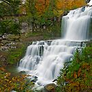 Overview in Autumn - Chittenango Falls by Stephen Beattie