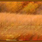 Autumn  by Wanda Dumas