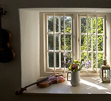 Looking out of Thomas Hardy's window by dorseteye