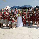 The Wedding Party by Darlene Bayne