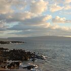Beach on Maui by markrt