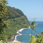 Overlooking the Beach, Hana Highway, Maui by markrt