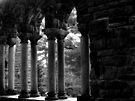 The Shadows Speak by Kayleigh Walmsley