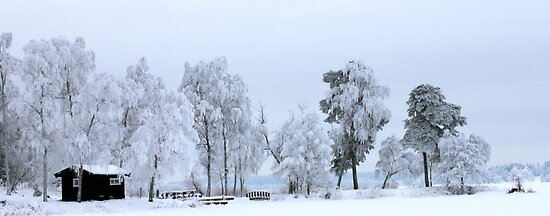 Winter landscape - Sweden by LadyFi