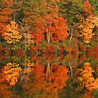 Reflections Of Autumn by Stephen Vecchiotti