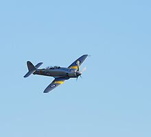 Sea Fury by WillOakley