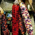 Indian Corn by Ladydi