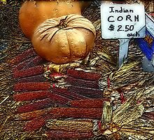 Pumpkin and Indian Corn by Ladydi