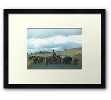Cattle Drive  Framed Print