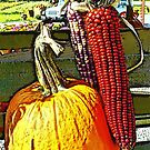 Pumpkin and Corn Display by Ladydi