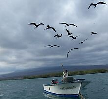 Galapagos Fisherman and Frigid Birds by Nina Brandin