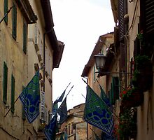 Montepulciano Salute by Terry Banfich