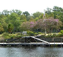 Boat Dock With Beautiful Crape Myrtle by Jean Watts