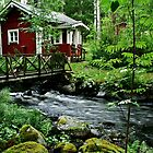 Stream and Cottage by tanmari