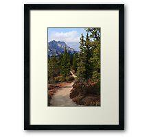 Trail in Banff Framed Print