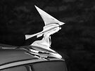 Franklin Hood Ornament ~ Black & White by Lucinda Walter