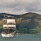 Tall sails in Carlingford Louth by Mairead1