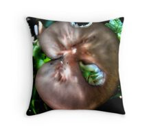 Is it a Sand Dollar? Throw Pillow